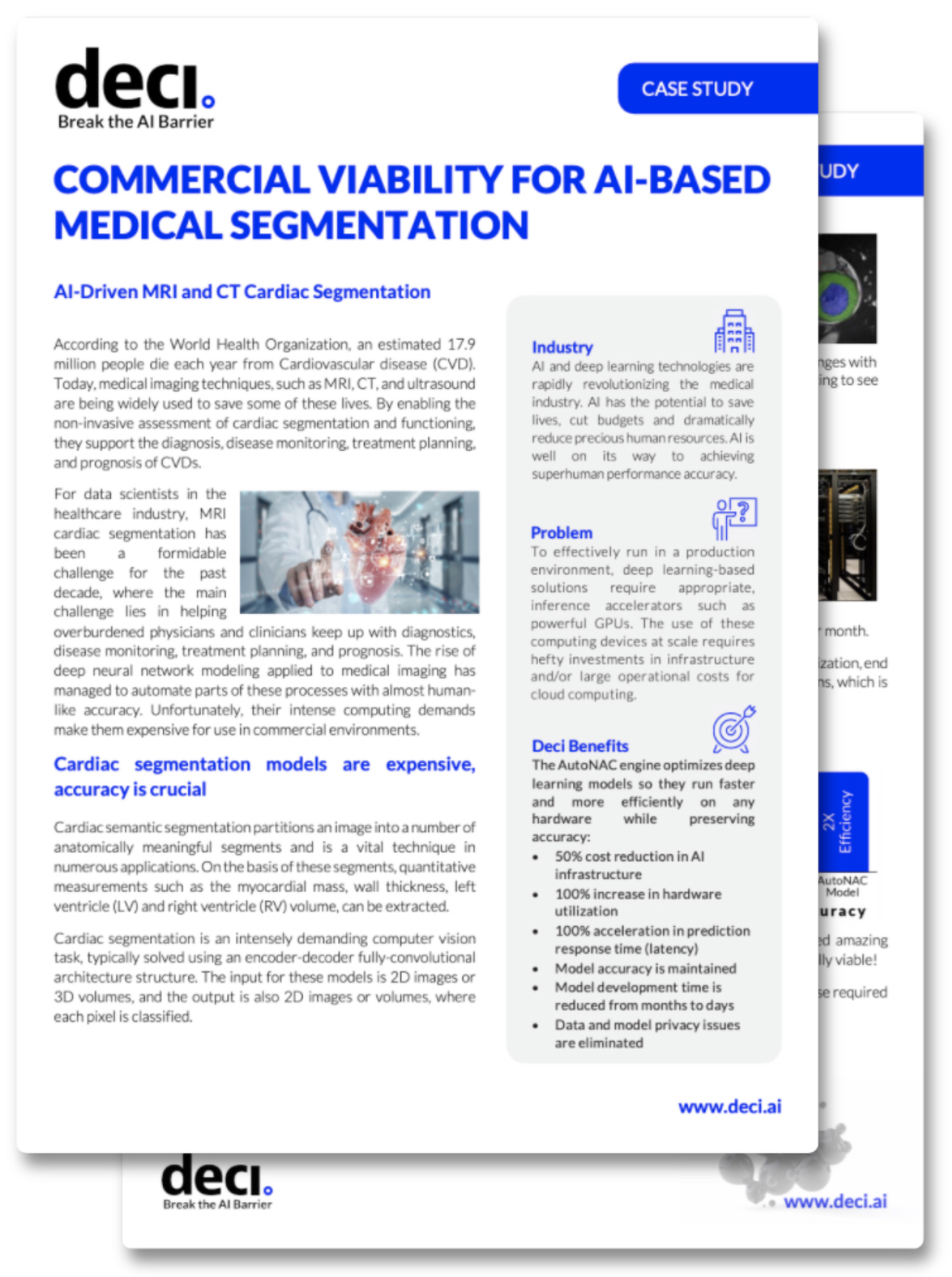 Preview - Commercial Viability for AI-based Medical Segmentation